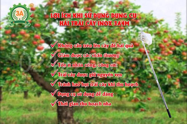 Lợi ích khi sử dụng Dụng cụ hái trái cây inox 3A4M