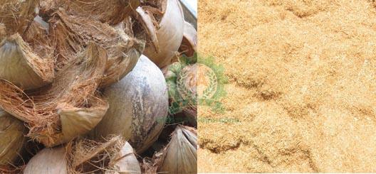 Máy băm nghiền rơm rạ, vỏ dừa 3A15Kw