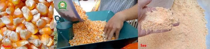 Máy chế biến thức ăn chăn nuôi trong việc nghiền ngô, khoai, sắn,...