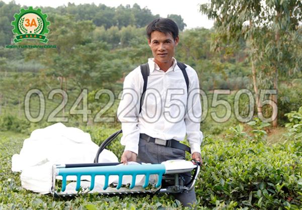 Anh Đinh Văn Phú cũng là một trong rất nhiều khách hàng sử dụng máy hái chè 3A
