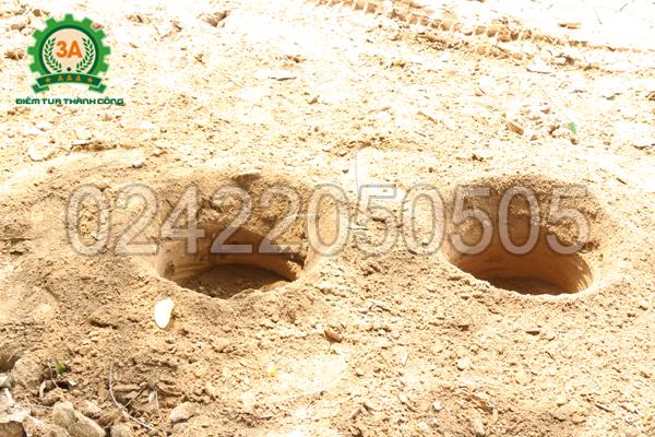 Hố đất được khoan bởi Máy khoan lỗ trồng cây chạy xăng 3A