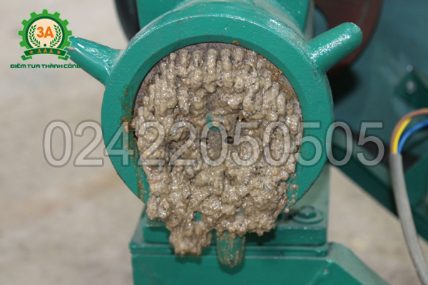 Ốc được xay nhuyễn bởi máy xay ốc 3A3Kw