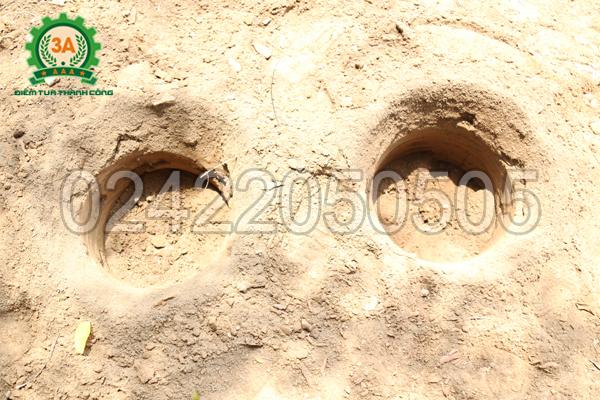 Hố đất được khoan bằng Máy khoan lỗ trồng cây chạy điện 3A