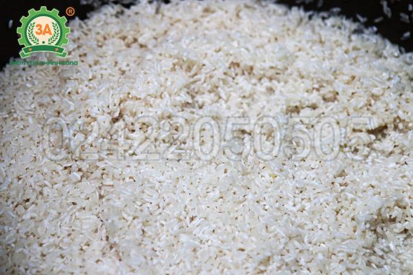Máy nghiền bột nước 3A370W (02)