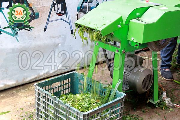 Máy băm thân cây ngô, cỏ voi 3A2,2Kw (10)