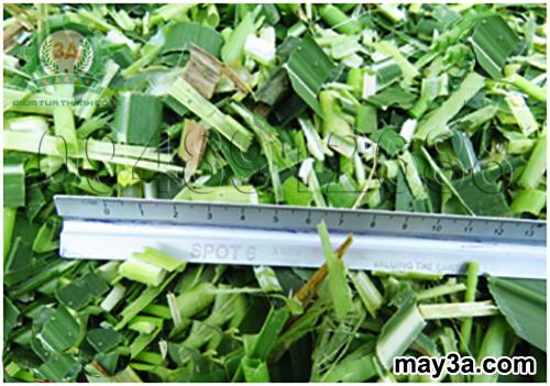 Nguyên liệu sau khi băm có độ dài từ 1cm đến 5cm