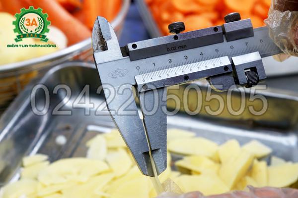 Máy cắt rau củ đa năng 3A2,2Kw có băng tải thái mỏng khoai tây