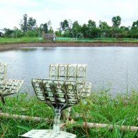 Trợ vốn giúp người dân Cà Mau khôi phục sản xuất