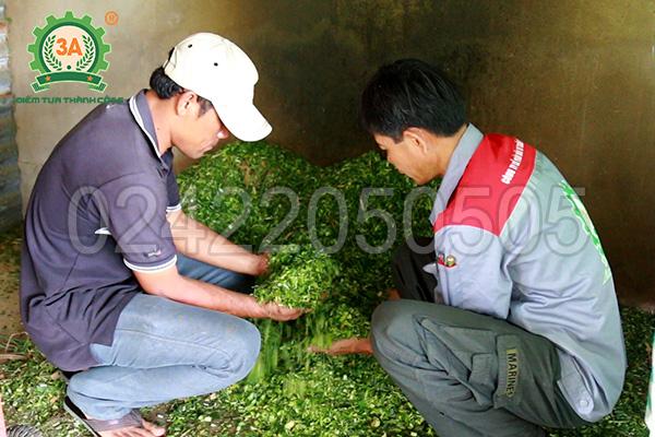 Máy băm cỏ, cành cây 3A4Kw 380V (07)