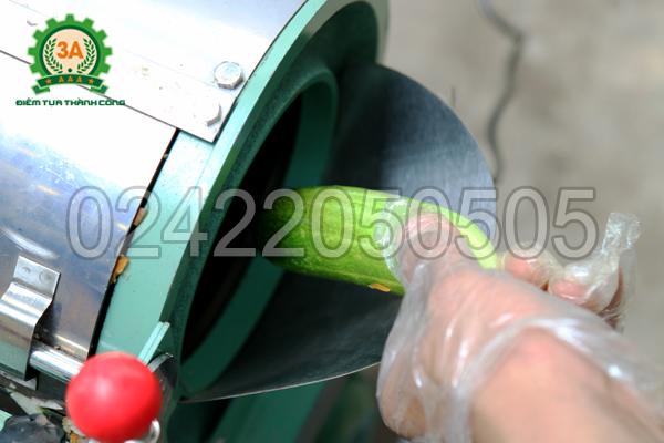 Đưa nguyên liệu vào cửa nạp Máy thái sợi rau củ quả 3A1,5Kw
