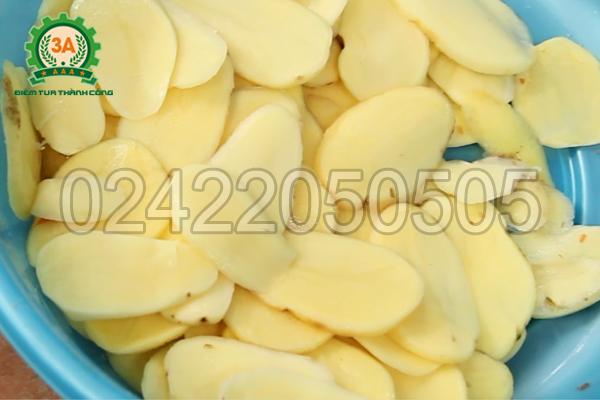 Máy thái sợi rau củ quả 3A1,5Kw thái lát khoai tây