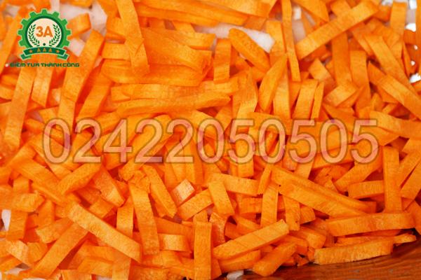 Máy thái sợi rau củ quả 3A1,5Kw thái sợi cà rốt