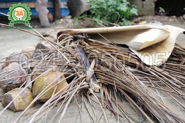 Vỏ dừa, tàu dừa là nguyên liệu của máy nghiền vỏ dừa, gỗ tạp 3A24Hp
