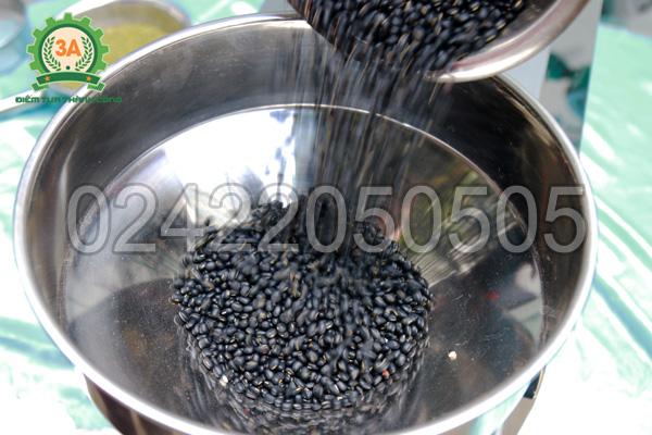 Xay đỗ đen bằng máy xay bột ngũ cốc 3A3Kw