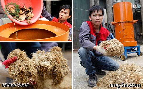Kỹ thuật viên băm vỏ dừa tươi bằng Máy băm phế phẩm nông nghiệp 3A11Kw