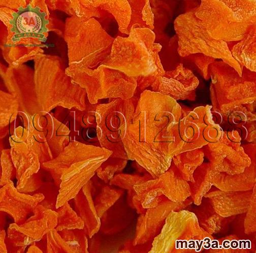 Cà rốt sấy bằng Máy sấy khô nông sản 3A