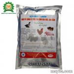 Phương pháp lên men thức ăn chăn nuôi bằng men vi sinh BTV