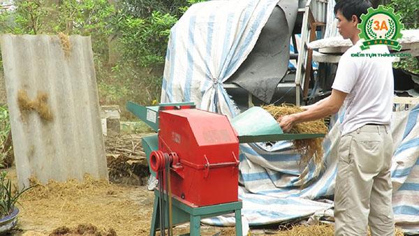 Người dân sử dụng Máy băm xơ dừa, rơm rạ, bã mía 3A3Kw để băm rơm làm giá thể trồng cây