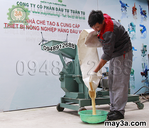 Kỹ thuật viên thu lấy cám ngô sau khi nghiền bằng Máy nghiền ngô 3A S7,5Kw