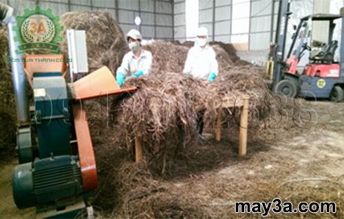 Chiếc máy nghiền lá sả khô 3A trong công trình nghiên cứu của nhà khoa học