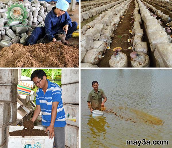 Máy băm nghiền xơ dừa, rơm, bã mía kiểu ống tròn 3A16Hp: Bột bã mía được sử dụng làm giá thể trồng nấm, dùng trong ao nuôi tôm