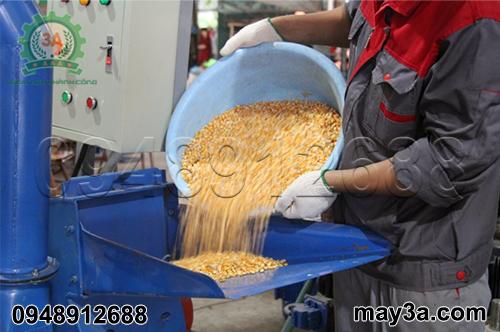Kỹ thuật viên nghiền ngô hạt bằng Máy băm ván bóc, vỏ dừa, gỗ tạp 3A22Kw