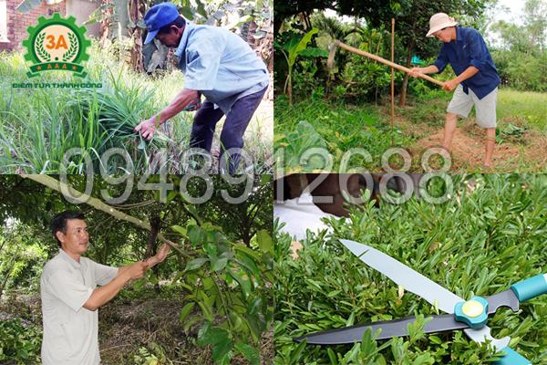 Công việc làm vườn tốn nhiều công sức, thời gian sẽ không còn là nỗi ám ảnh, nhờ Máy làm vườn nhiều tác dụng 3A