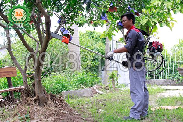 Kĩ thuật viên đang sử dụng máy làm vườn nhiều tác dụng 3A để cắt cành