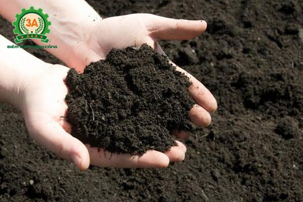 Sử dụng rác thải từ nhà bếp để làm phân hữu cơ: Phân hữu cơ thu được