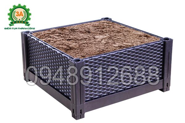 Khay trồng rau 3A chứa nhiều đất dinh dưỡng