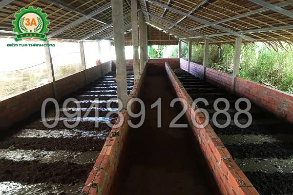 Kỹ thuật nuôi giun quế: Chuồng trại nuôi giun