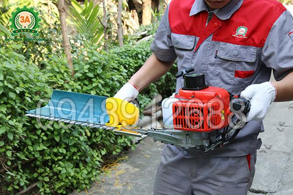 Vận hành máy cắt hàng rào chạy xăng 3A: Cầm máy tay thuận