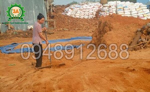 Cách làm phân hữu cơ từ xơ dừa: Sử dụng chang để dàn mỏng đống ủ