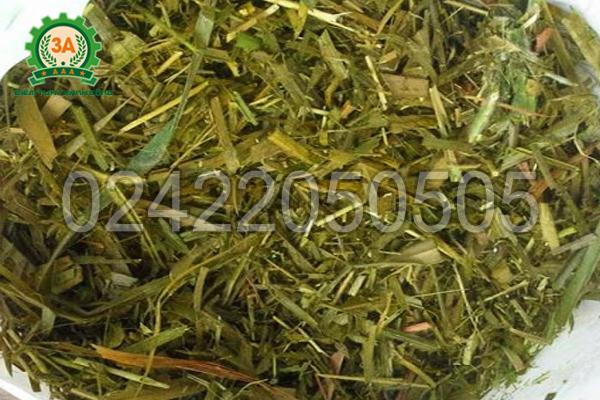 Túi ủ chua 3A giúp giảm tối đa nguy cơ nguyên liệu bị nấm mốc