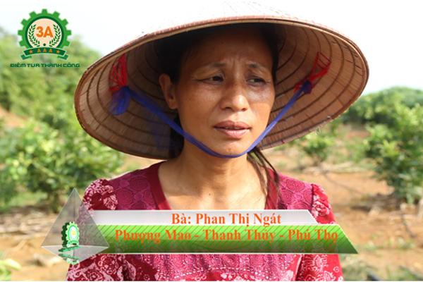Cô Ngát có nhu cầu mua một Hệ thống tưới nước nhỏ giọt cho đồi cây ăn quả