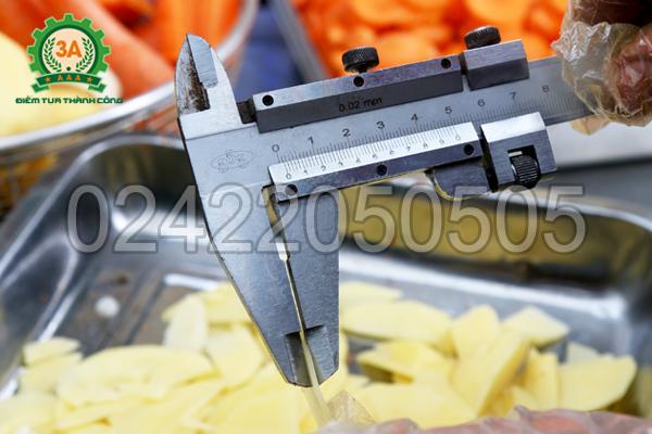 Khoai tây được thái bằng Máy thái rau củ quả 3A1,5Kw có băng tải