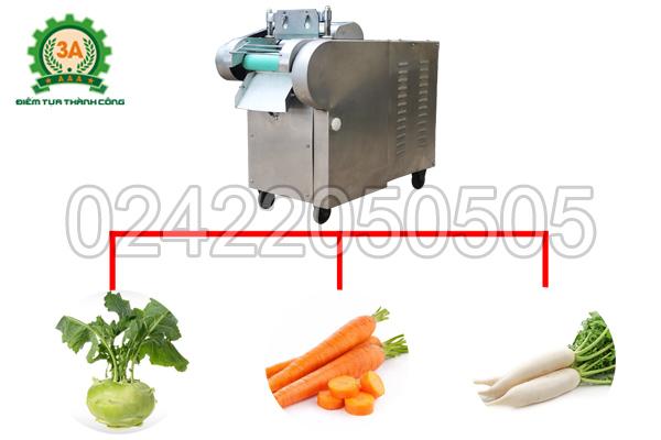 Máy thái rau củ quả 3A1,5Kw (có băng tải) có khả năng thái được nhiều loại nguyên liệu