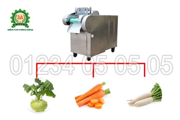 Máy thái rau củ quả 3A1,5Kw (dạng băng tải) có khả năng thái được nhiều loại nguyên liệu