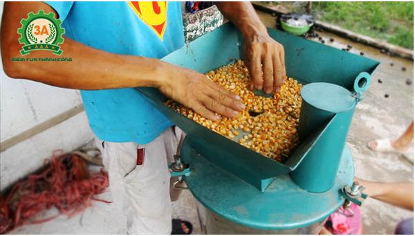 Anh Nguyễn Văn Hưng đang sử dụng Máy băm nghiền thức ăn chăn nuôi 3A2,2Kw (phễu vuông)