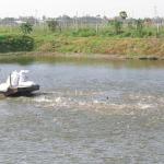 Bí quyết nuôi cá nước ngọt hiệu quả kinh tế cao
