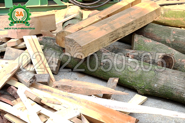 Nguyên liệu đầu vào của máy nghiền gỗ 3A45KW