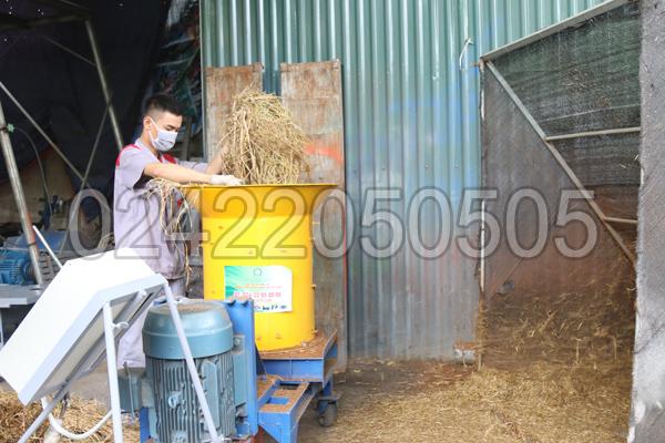 Băm rơm với Máy xay xơ dừa, rơm rạ 3A15Kw