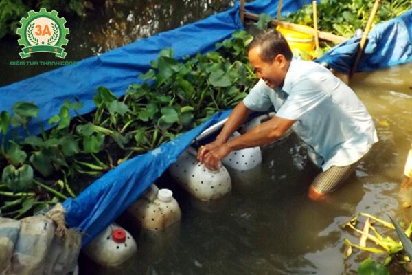 Nuôi lươn trong can nhựa tốn ít công chăm sóc