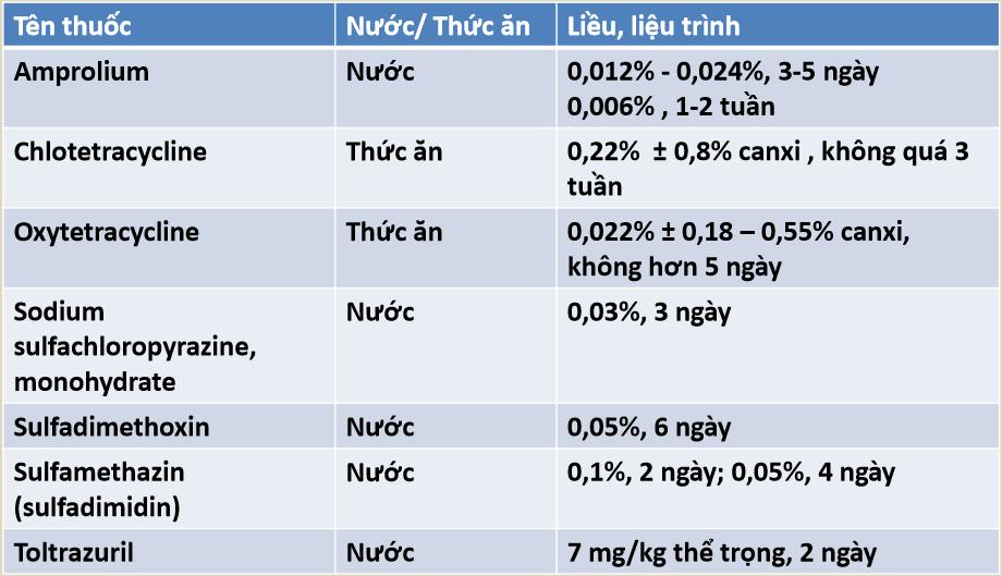 Bệnh cầu trùng ở gà: Thuốc trị bệnh cầu trùng