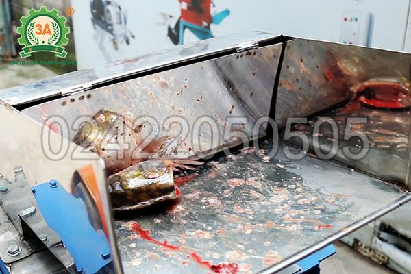 Cửa nạp nguyên liệu của máy cắt cá 3A4Kw