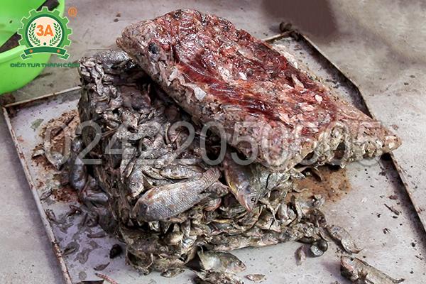 Nguyên liệu đầu vào của máy cắt cá đông lạnh 3A3Kw