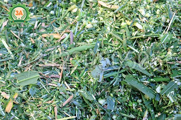Rau cỏ được băm nhỏ bằng Máy băm nghiền đa năng 3A2,2Kw (Phễu vuông - Động cơ rời)