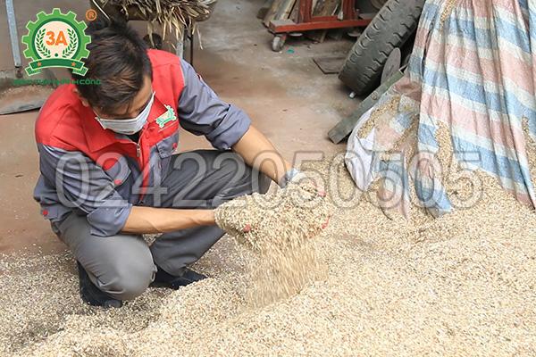 Sản phẩm đầu ra của máy băm gỗ 3A55Kw