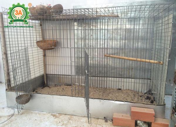 Làm chuồng nuôi gà tre (11)