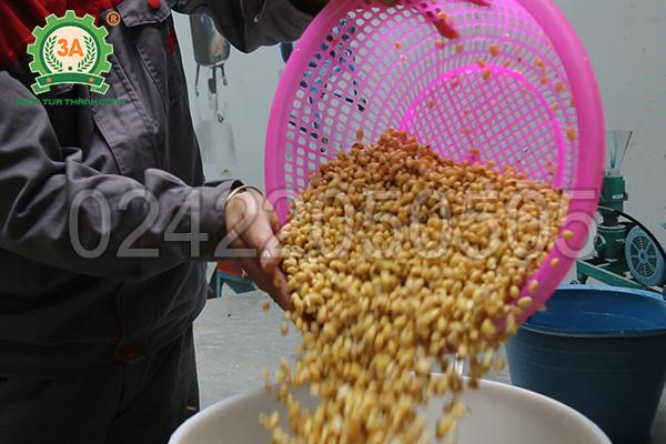 Đổ nguyên liệu vào phễu nạp của Máy xay đậu nành tách bã 3A370W